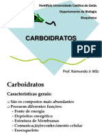 Aula 04 Carboidratos