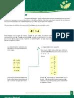 3.2.1. Regla de Cramer