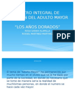 proyectogerenciaDIAPO