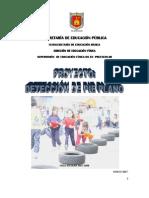 proyecto_para_pie_plano.pdf