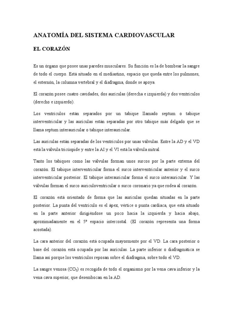 ANATOMÍA DEL SISTEMA CARDIOVASCULAR