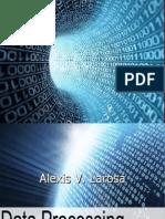 Dataprocessing Report