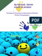 proiectpsihopedagogie-101117173051-phpapp01