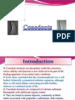 Conodonts