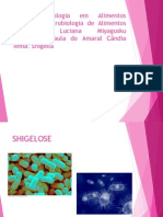 Shigelose -apresentação PRONTAAAAA