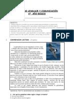 PRUEBA DE LENGUAJE Y COMUNICACIÓN texto lirico6