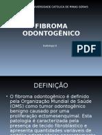 FIBROMA ODONTOGÊNICO