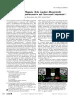 Anisotropic Nano Hybrids