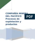 CAP Procesos de explotación y Productos