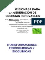Usos de Biomasa Para La Generacion de Energias Renovables