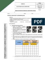 PRAXIS 21 MECANISMOS DE COORDINACIÓN NERVIOSA Y RECEPTORES VISUALES