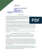 Planificación - Monografias.com