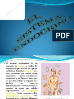 69793315 Sistema Endocrino