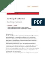 Microbiología de la tuberculosis