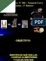 cadenasalimentarias-101020173940-phpapp01 (1)