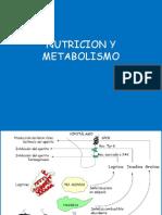 7. Nutricion