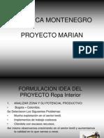 formulacionideadelproyectoropainterior-100428003319-phpapp02