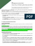Derecho_Penal_I.1er y 2da Resumido