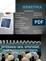 Interaksi Gen, Epistasis Dan Rasio Fenotipnya