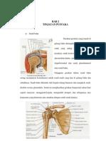 Dislokasi Shoulder Joint
