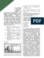 PC2 - 1C