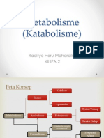PPT KATABOLISME