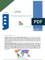 (2010-02-11) TDT Canarias v2ok.pdf