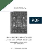 Padmasambhava La Clef Du Sens Profond Du Livre Des Morts Tibetain Gyatrul Rinpoche
