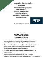 TEORIA_NEMATODOS_1 (1)