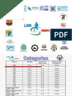 Reglamento Torneo de Copa 2013