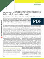 Epigenetic Choreographers of Neurogenesis