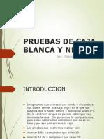 Caja Blanca - Presentacion