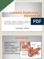 Sistema Endócrino -PÂNCREAS (1)