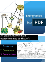 energy-roles-in-ecosystems-notes-7 12b