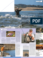 Saltwater Fly Fishing Wexford - Bass