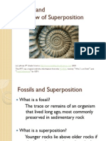 superposition-fossils 1