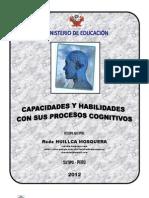 CAPACIDADES CON SUS PROCESOS CONGNITIVOS (TODAS DEL DCN)