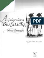 A indepêndencia brasileira