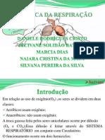 Slide de Biofisica