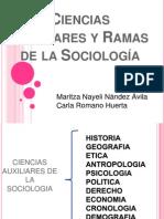 cienciasauxiliaresyramasdelasociologia-120307210306-phpapp02