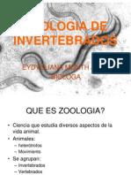 Clase No 1modificada Protozoos