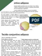 Biologia - Tecidos conjuntivos - Adiposo e Hemotopoiético