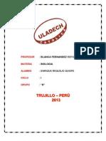 Enrique_Requejo_trabajo de Proyeccion Social