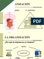 Administ. II - La Organizacion