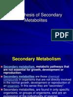 Seconadary Metabolites and Pathways