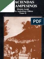 Bengoa Jose - Haciendas Y Campesinos Historia Social de La Agricultura Chilena T2