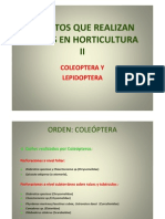 Presentacplagas Horti II2012]
