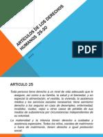 Artículos de los Derechos Humanos  25-30