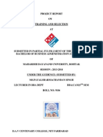 Dominos Hr Report