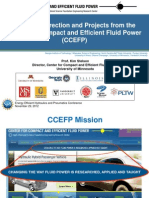 16_research Direction and Projects From the Ccefp